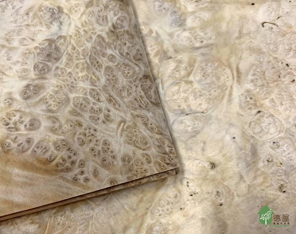 樹瘤木皮板