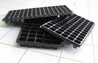 peluang usaha baru, usaha kecil, tray semai, jual online, toko pertanian, lmga agro