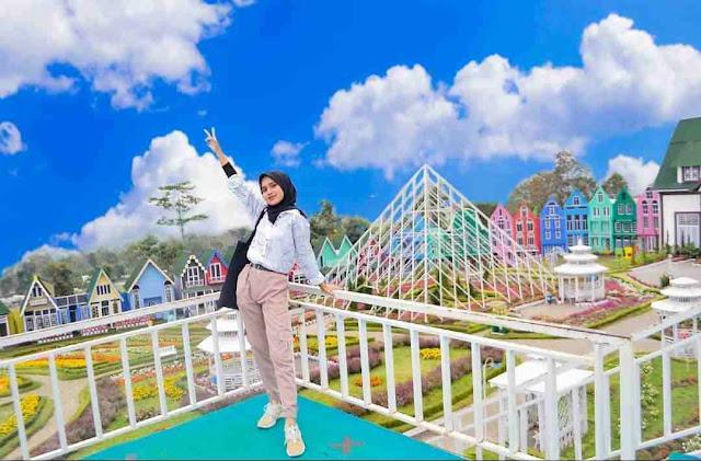 Taman Bunga Celosia Bandungan: Lokasi, Rute, dan Harga Tiket