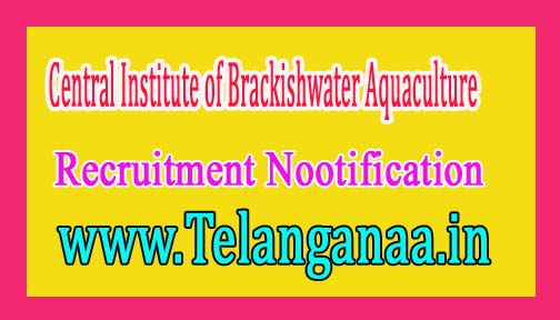 Central Institute of Brackishwater Aquaculture CIBA Recruitment Notification 2016