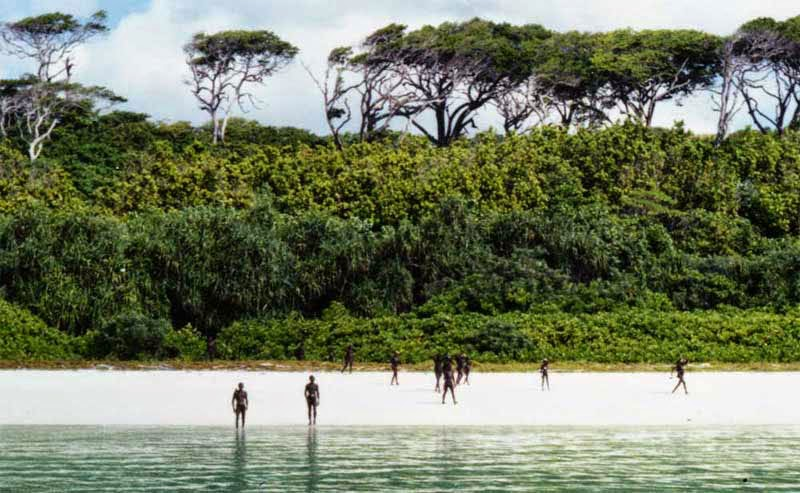 2. North Sentinel Island Forest, Bay of Bengal - 5 Fairytale Forests Straight Out of a Story Book