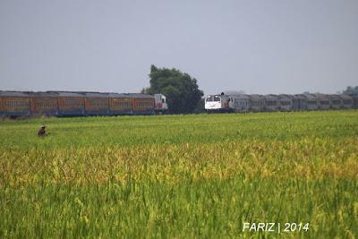 Jadwal KA Walahar Ekspres Purwakarta-Tanjung Priuk dan Sebaliknya Terbaru Mulai 1 Desember 2019