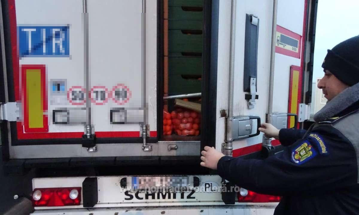 Cinci cetățeni străini, depistaţi ascunşi într-un camion cu portocale