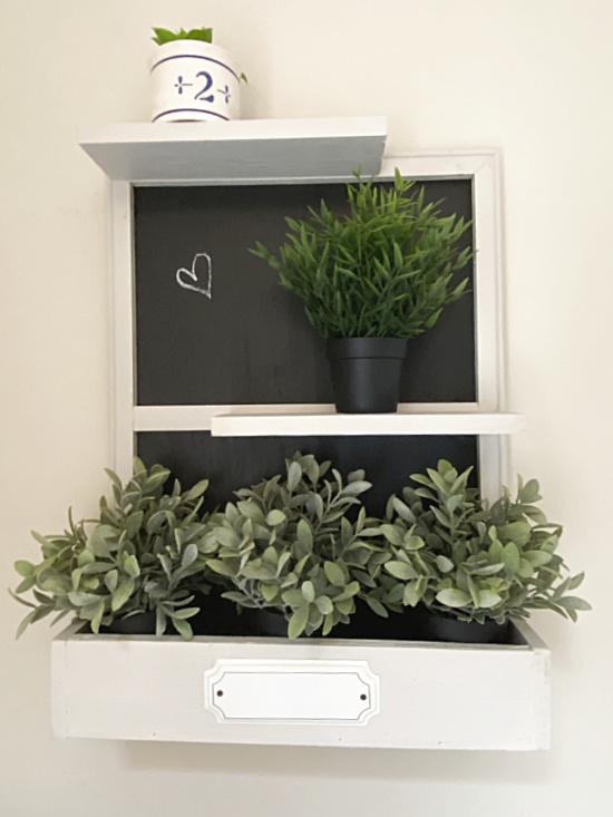 black and white shelf filled with plants