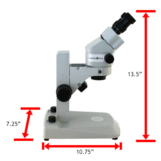 Stereo zoom dissection microscope most popular among US high schools.