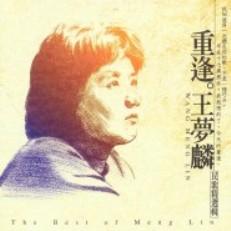 Wang Meng Lin ( 王梦麟 ) - A mei A mei ( 阿美阿美 )