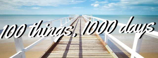 100 things in 1000 days