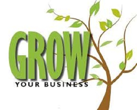 Ways To Grow Your Business In Nigeria