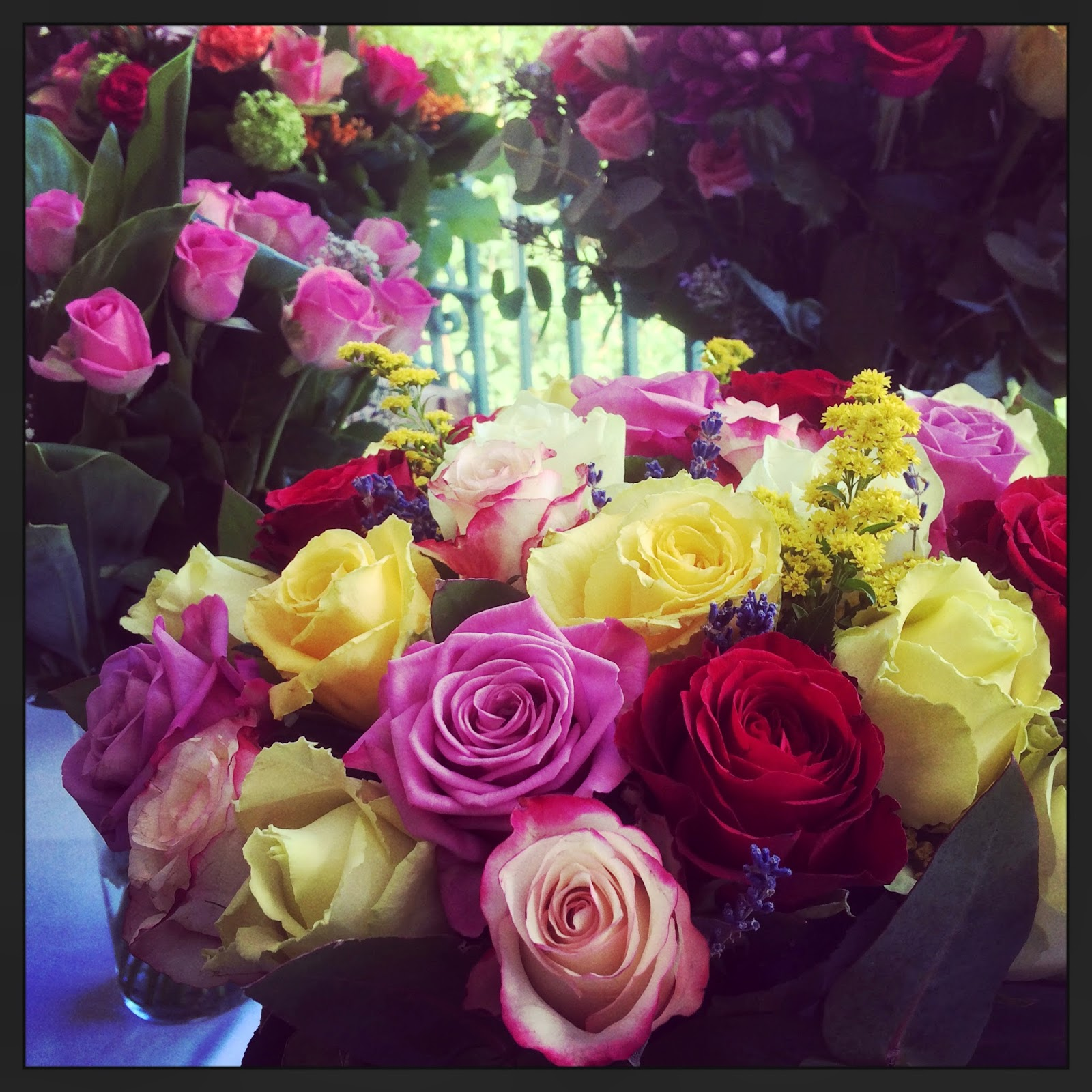 instagram pic of roses