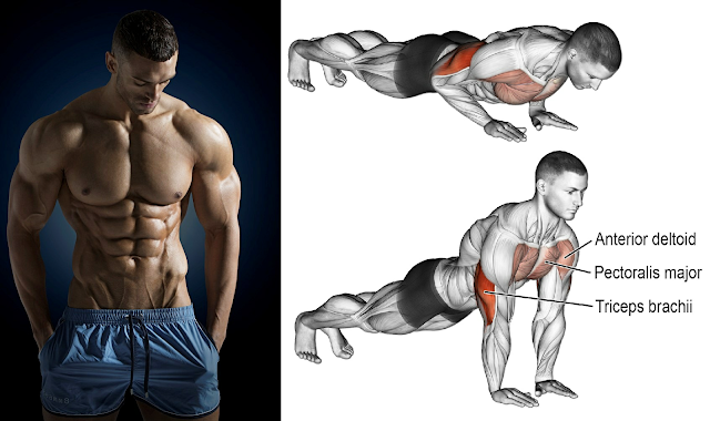 5 Exercises to Build Muscle at Home Without Gym Tools