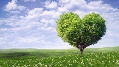 10 Ayat Alkitab Tentang Cinta Ini Bakalan Bikin Kamu Semakin Kenal Tuhan