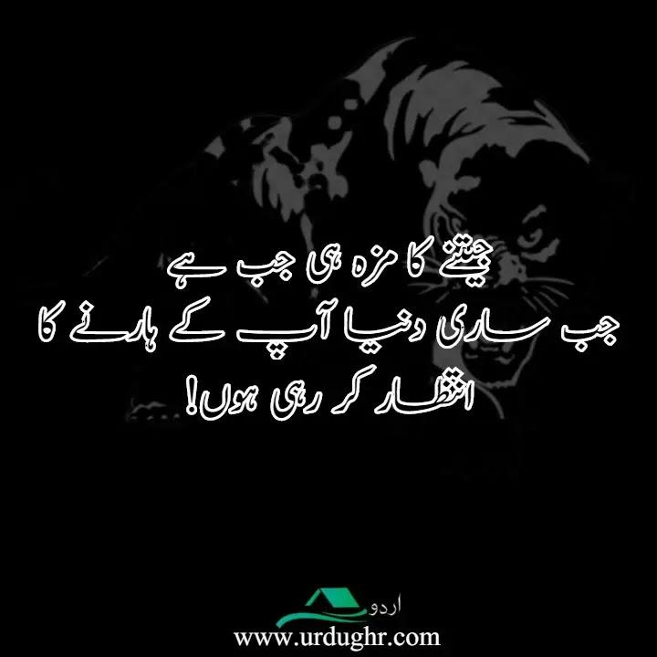 Ignorance Quotes in Urdu