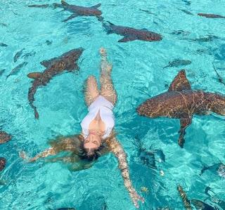 Digital influencer leva mordida de tubarão em viagem de férias