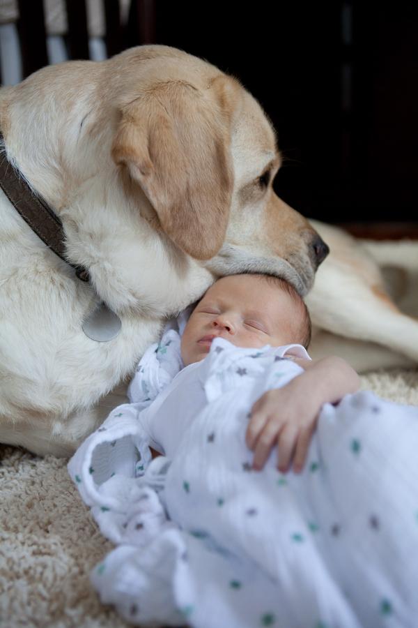 DAnna  Amie Fedora Photography IMG1107 low - Baby's Best Friend