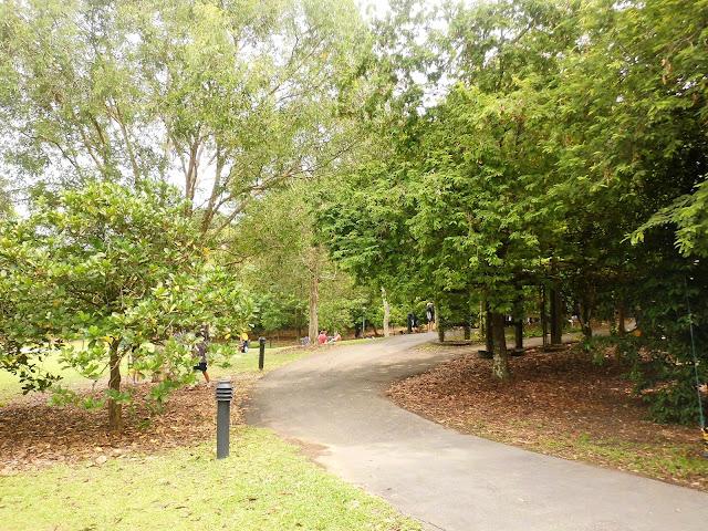 tempat menarik di singapore botanic garden