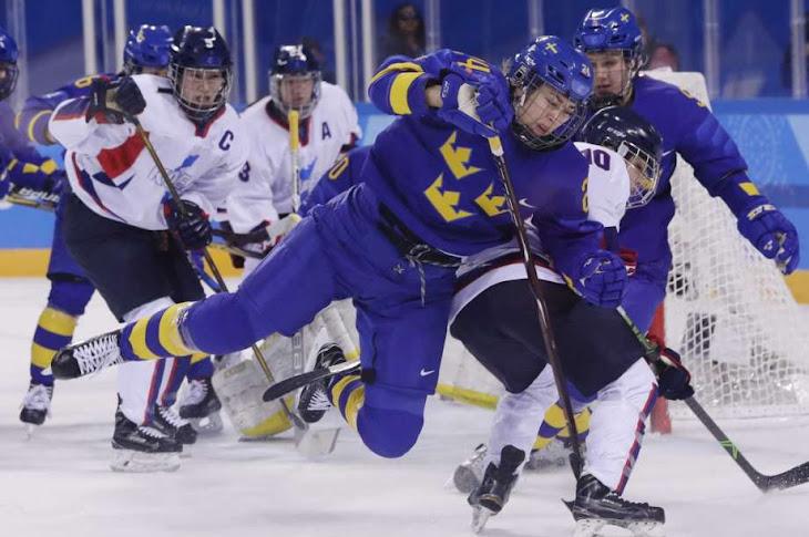 Women Swedish Hockey Players Boycott Over Pay