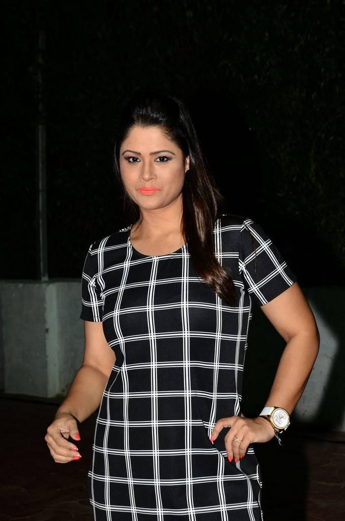 Shilpa Chakravarthy At Srivalli Movie Pre Release Event Gallery