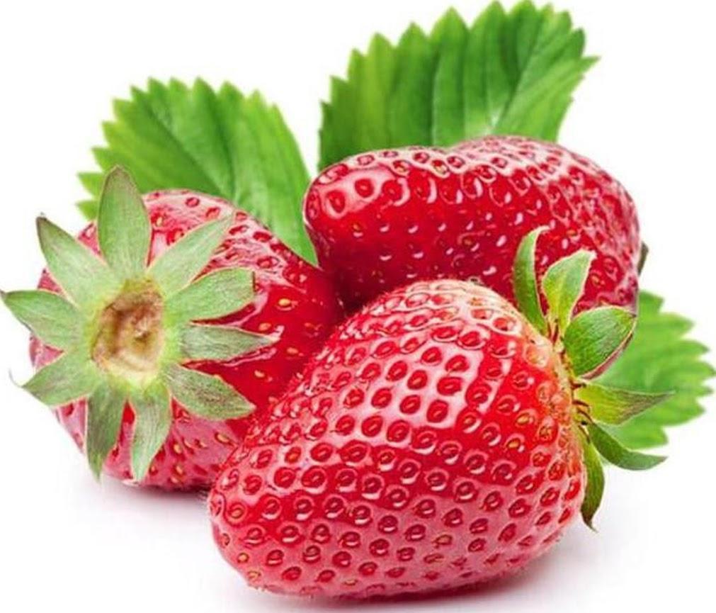 beli 2 gratis 1 Bibit Unggul Bibit Buah Strawberry Holland bisa cod Kalimantan Barat