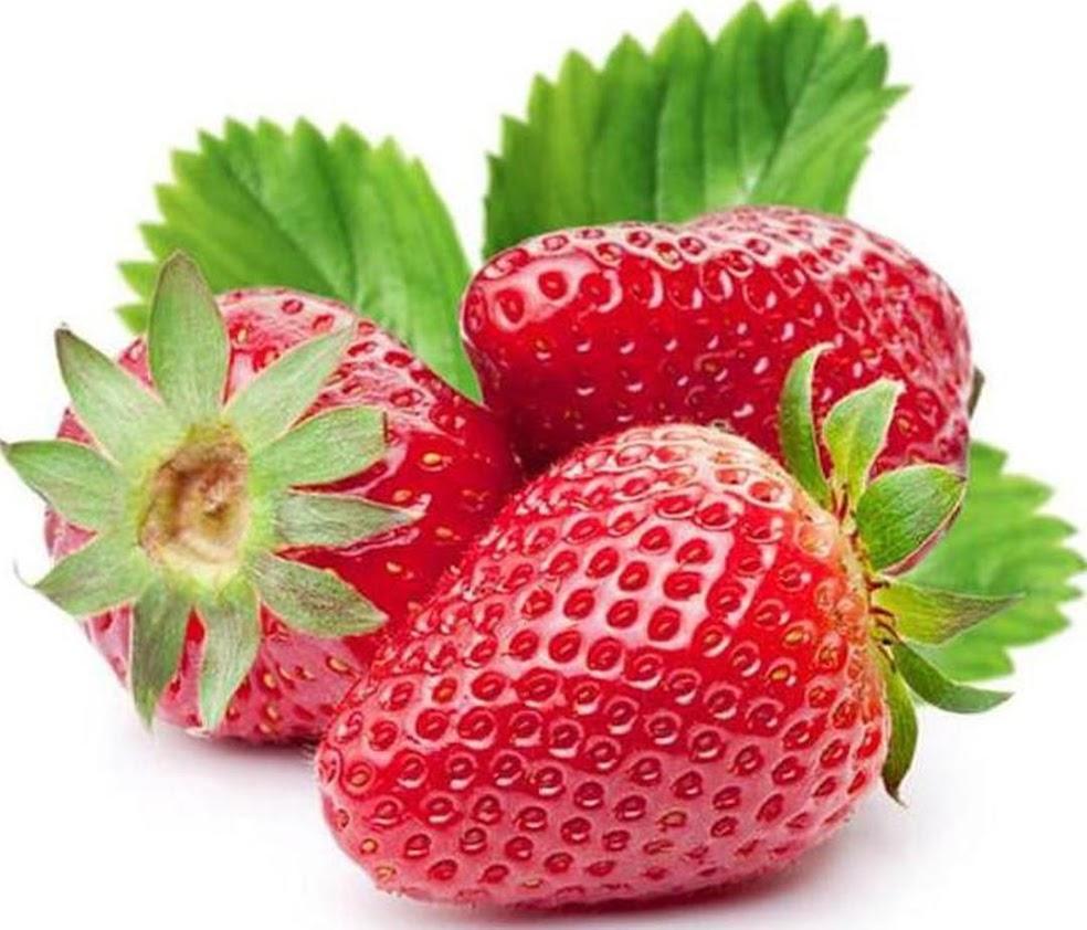 beli 2 gratis 1 Bibit Unggul Bibit Buah Strawberry Holland bisa cod Ambon