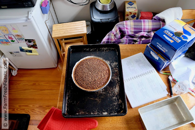 behind the scenes making chocolate pecan chess pie for Thanksgiving