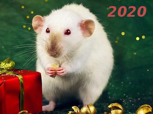 Гороскоп на 2020 год по году рождения
