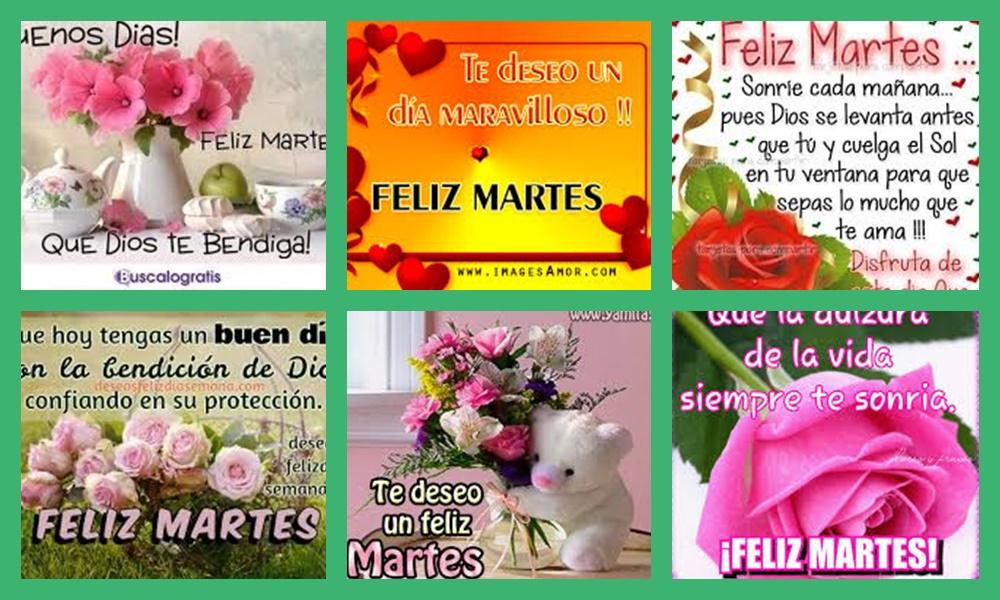 Buenos Días Feliz Martes Para Todas Las Personas Que Ven Estas