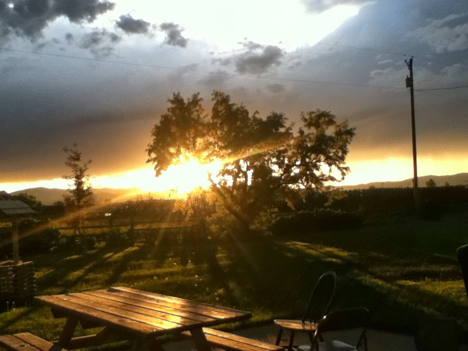 Gotta Love Montana Sunsets