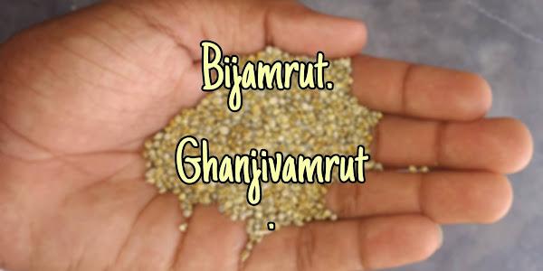 How to make Bijamrut & ghanjivamrut-bijamrut kese Bnaye?