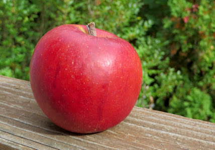 Red apple with deep red streaks