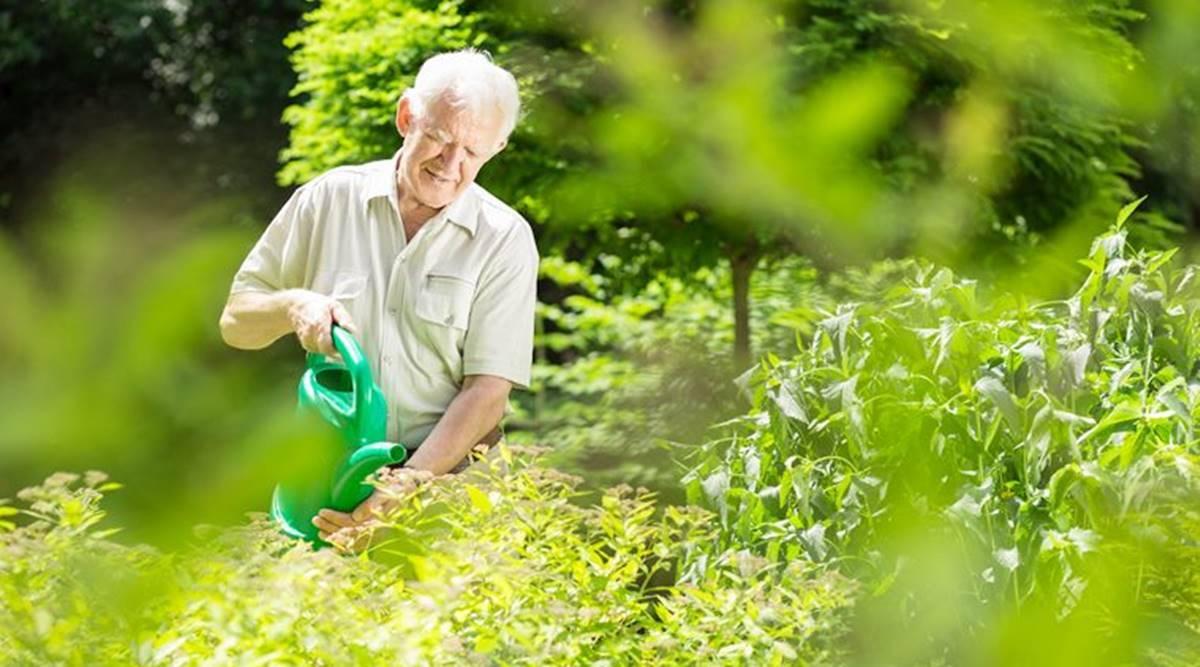 Người già nên nằm nệm nước như thế nào?