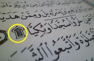 Pada kesempatan kali ini akan membahas tentang  Macam-Macam Sujud dalam Islam dan Penjelasannya