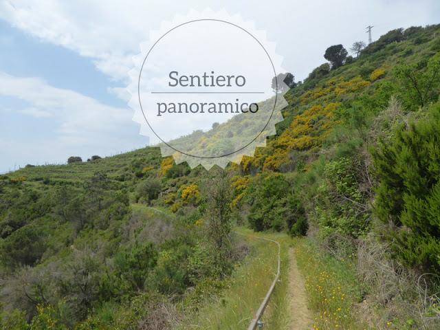 Sentiero alternativo da Riomaggiore a Corniglia