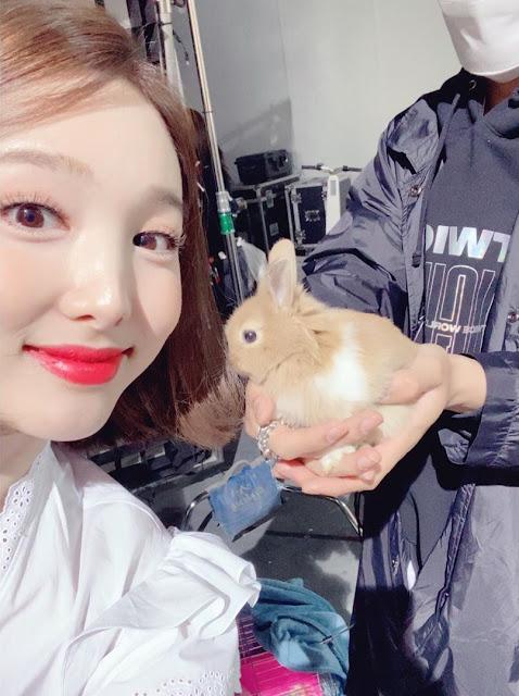 twice nayeon bunny
