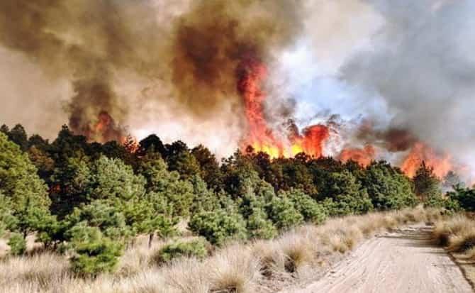 extinguidores, alarmas, fuego,