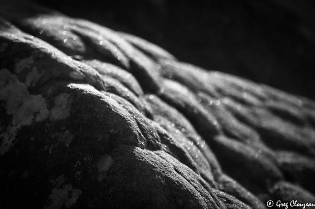 50 nouvelles Nuance de grès n°1Forêt de Fontainebleau