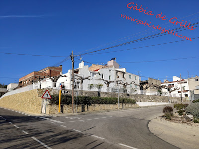 Les-Cases-del-Riu-06