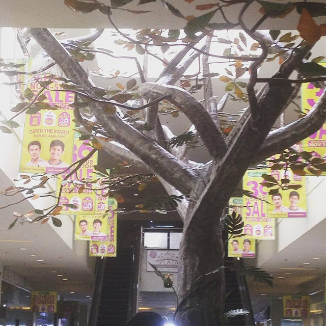 Discovery Tree at Parkmall Cebu