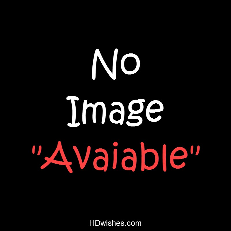 No Image Available Black DP