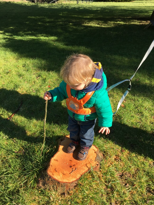 Toddler stood on tree stump holding stick