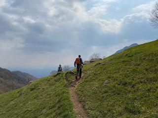 On Trail 533 below Salmezza.