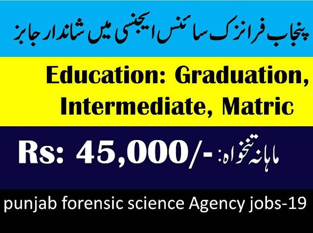 Punjab Forensic Science Agency Jobs 2019
