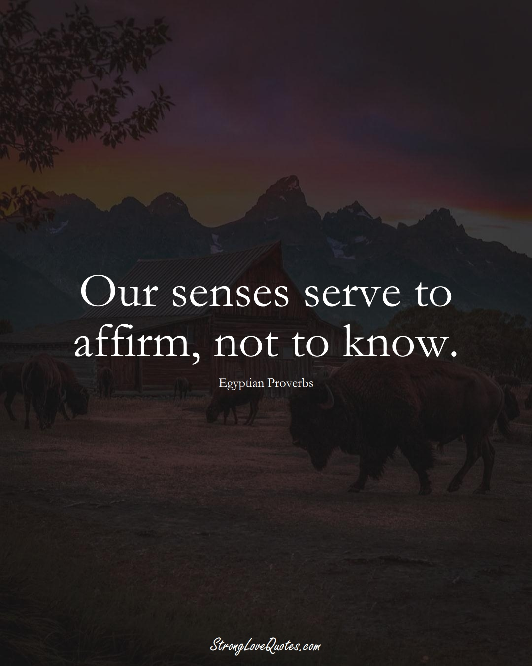 Our senses serve to affirm, not to know. (Egyptian Sayings);  #MiddleEasternSayings
