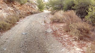 каменистые дорожки на Южной горе