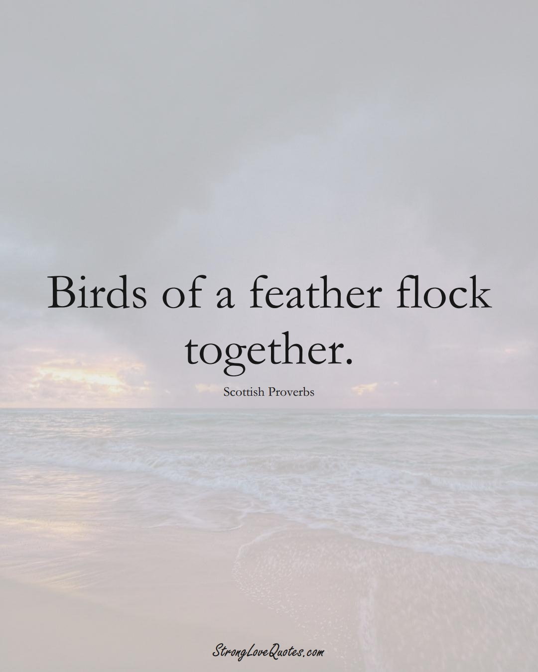 Birds of a feather flock together. (Scottish Sayings);  #EuropeanSayings