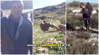 (بالفيديو) سليانة... مواطن يستولي على مقبرة ويخرج جثث الموتى لغراسة الزيتون مكانها !!