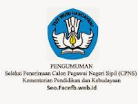 Pengumuman CPNS Kemdikbud 2017/2018
