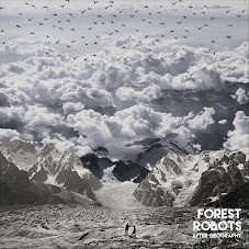 Forest Robots - After Geography