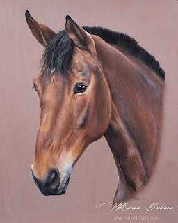 fabulosos-bocetos-caballos