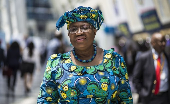 US rejects Ngozi Okonjo-Iweala's appointment as WTO Director-General
