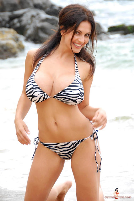 Denise Milani Beach Zebra HD Sexy Photoshoot Hot Photo 17